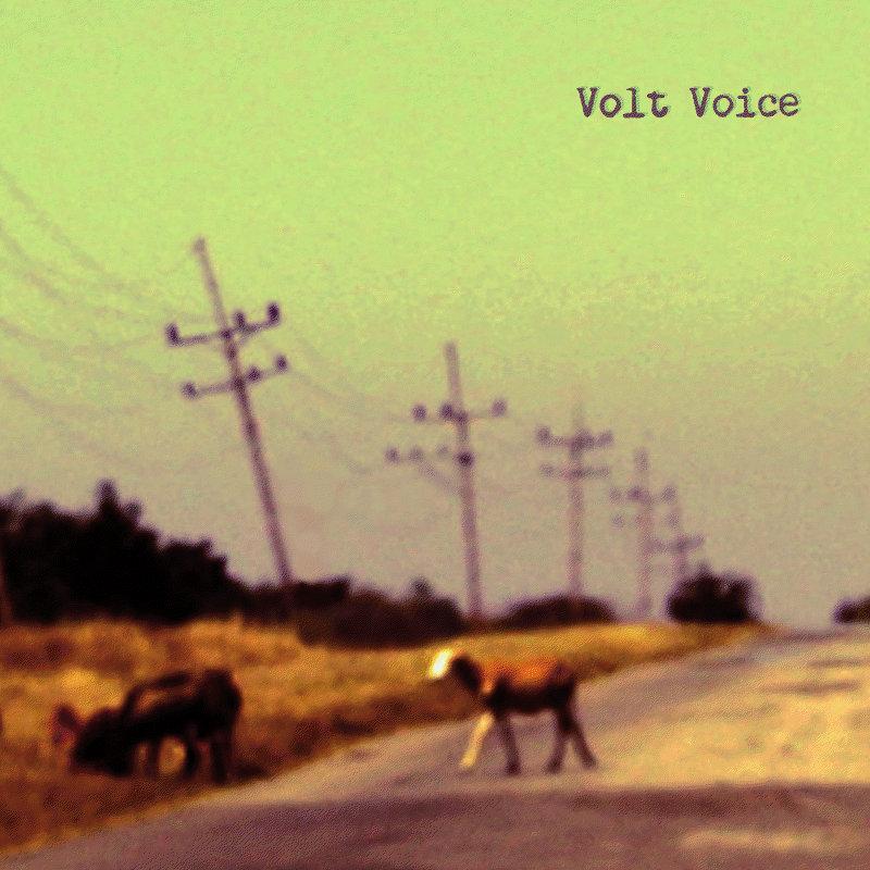Volt Voice - indie noise rock